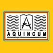 Aquincum Angol - Magyar Két Tanítási Nyelvű Általános Iskola