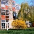 Pais Dezső Általános Iskola