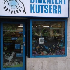 Díszállat Kutsera - Lajos utca