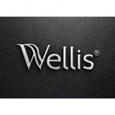 Wellis Fürdőszobaszalon - Self Store Plaza