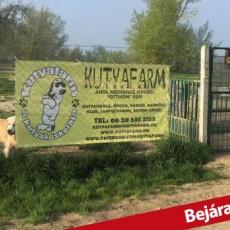 Kutyafarm Kutyaiskola és Kutyapanzió
