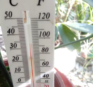 Hőség! (fotó: ittlakunk.hu)